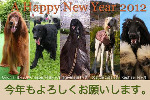 2012newyearcard3_900