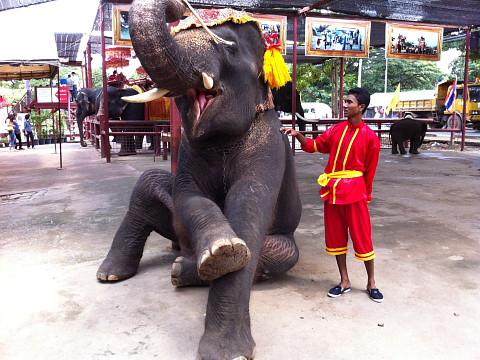 2926i2995ayutthaya_480