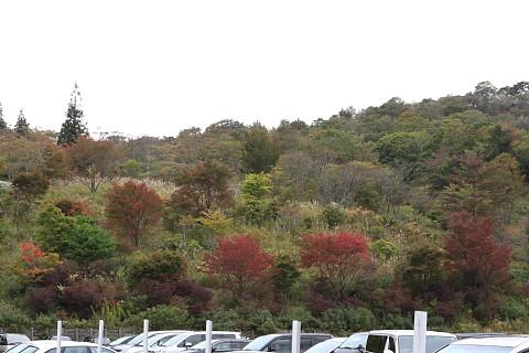 2a14f6392chausuyama_480