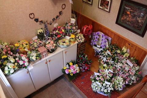 3210f1810flowers_480