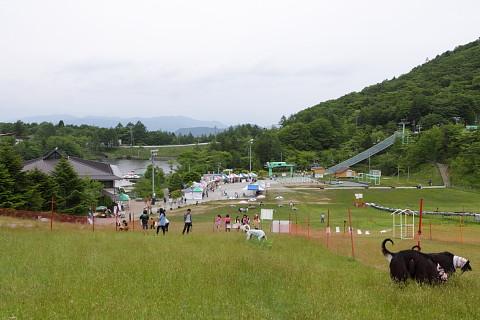 3609f9301chausuyama_480_2