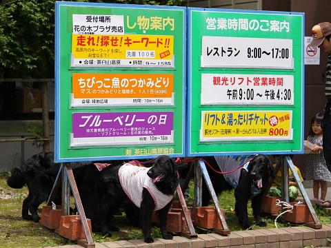 3714f2353chausuyama_480