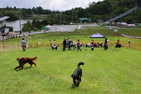 4720f1586chausuyama_960